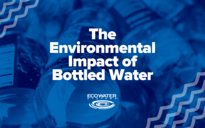 The Environmental Impact of Bottled Water